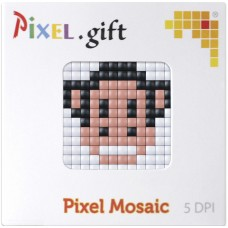 Kit Mini Plaque PIXEL XL Singe